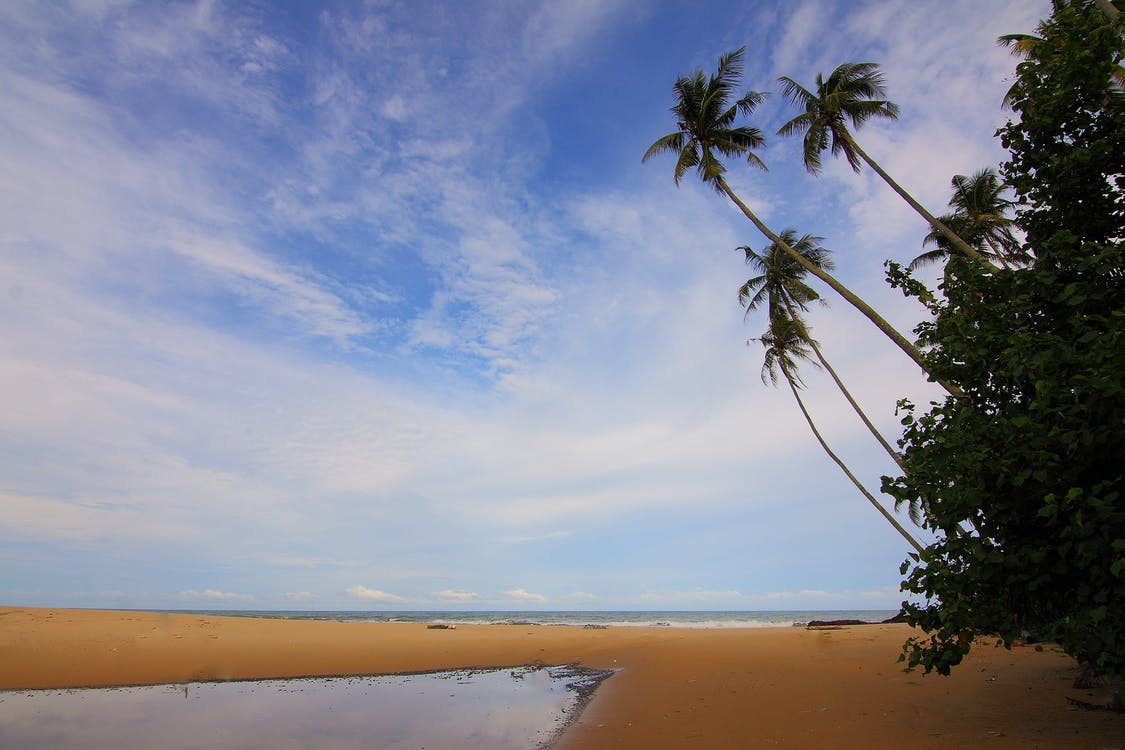 Blue Sky Above Beach during Daytime