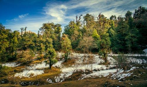 Fotos de stock gratuitas de # tungnath # chandrashila # chopta