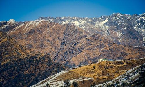 Foto d'estoc gratuïta de alt, altitud, arbres, cel