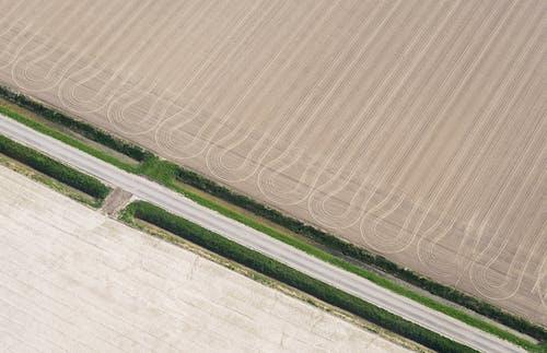 Foto d'estoc gratuïta de camp, camps de cultiu, des de dalt, estampat