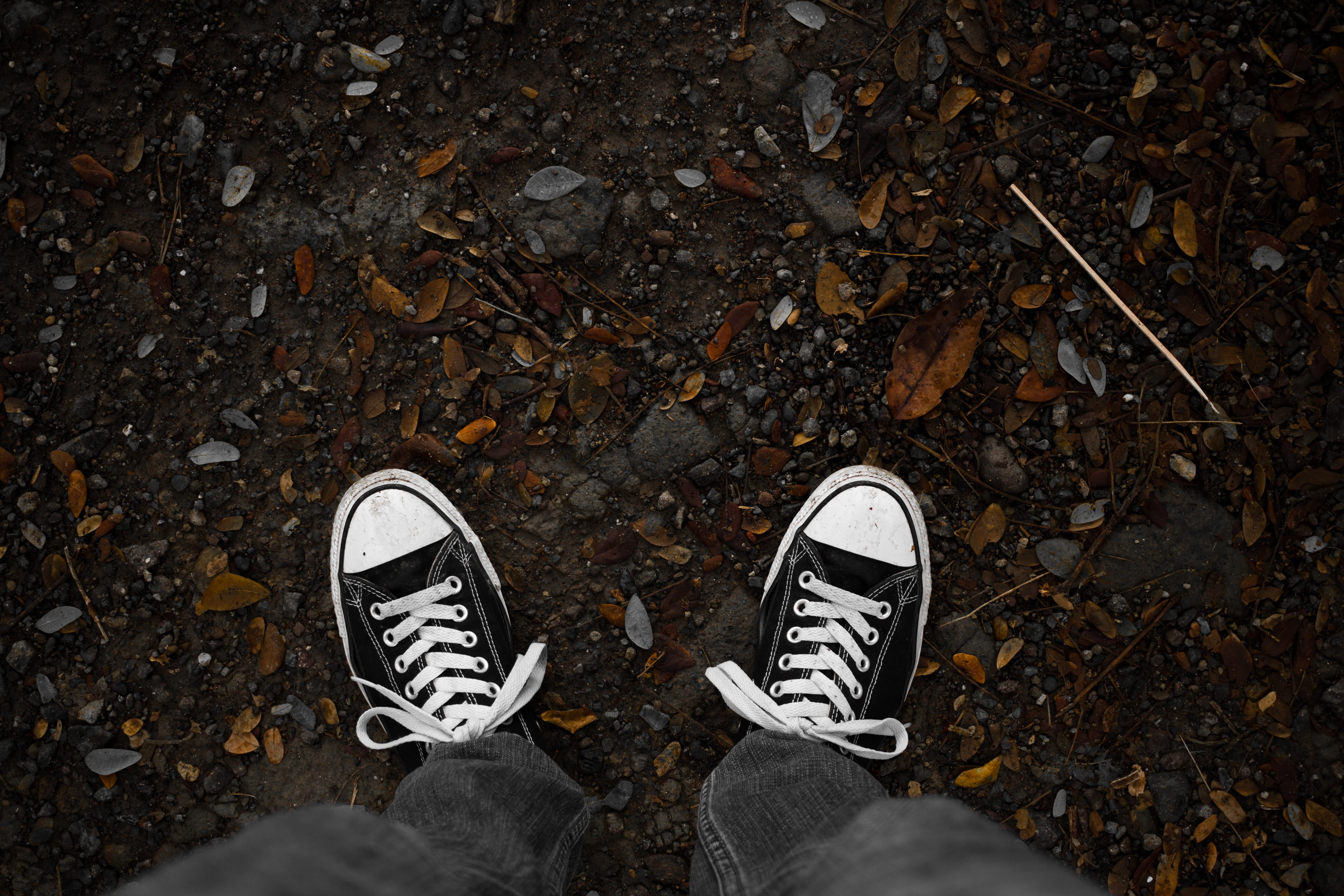 Free stock photo of chuck taylor, chucks, converse, converse all star