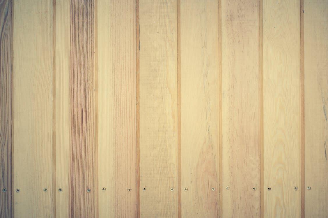 borovica, cviky plank, dekoratívny