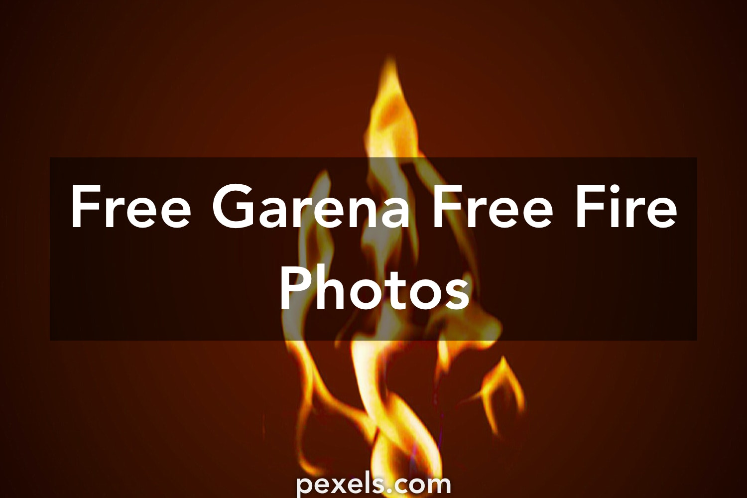 500 Great Garena Free Fire Photos Pexels Free Stock Photos