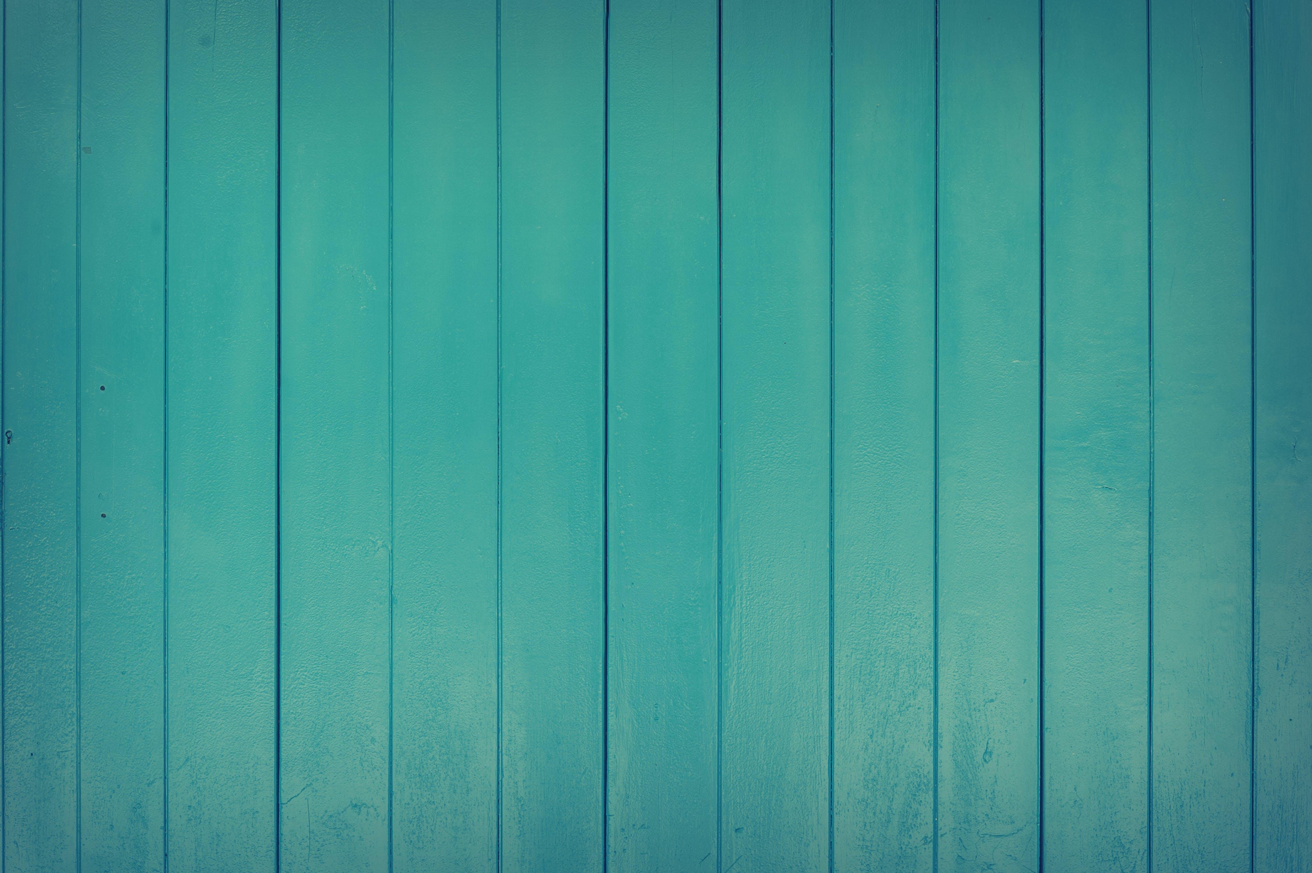Kostenloses Stock Foto zu grün, holz, mauer, muster