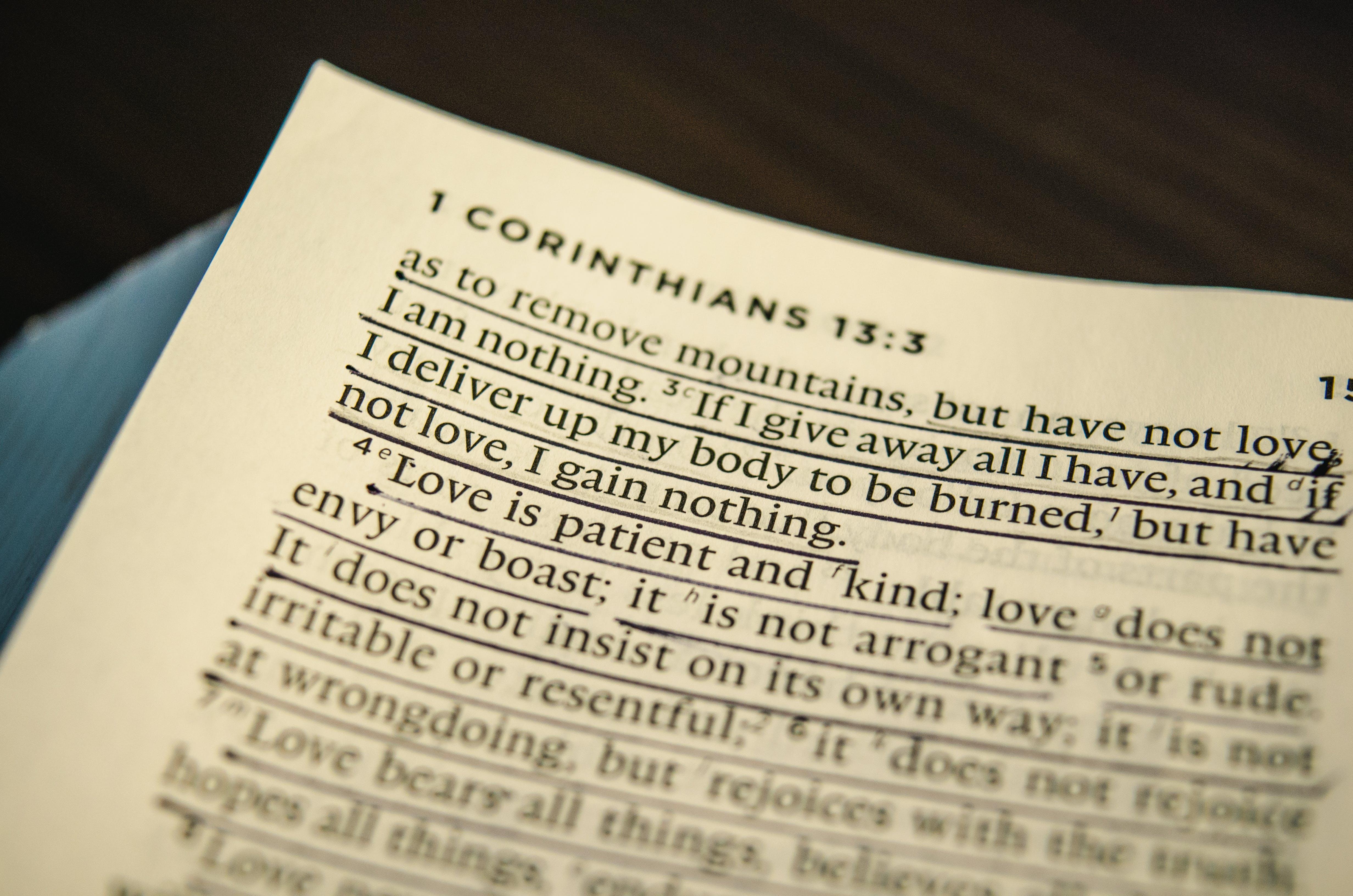 Gratis lagerfoto af Bibel, bibelstudiet, forhold, hellige skrifter