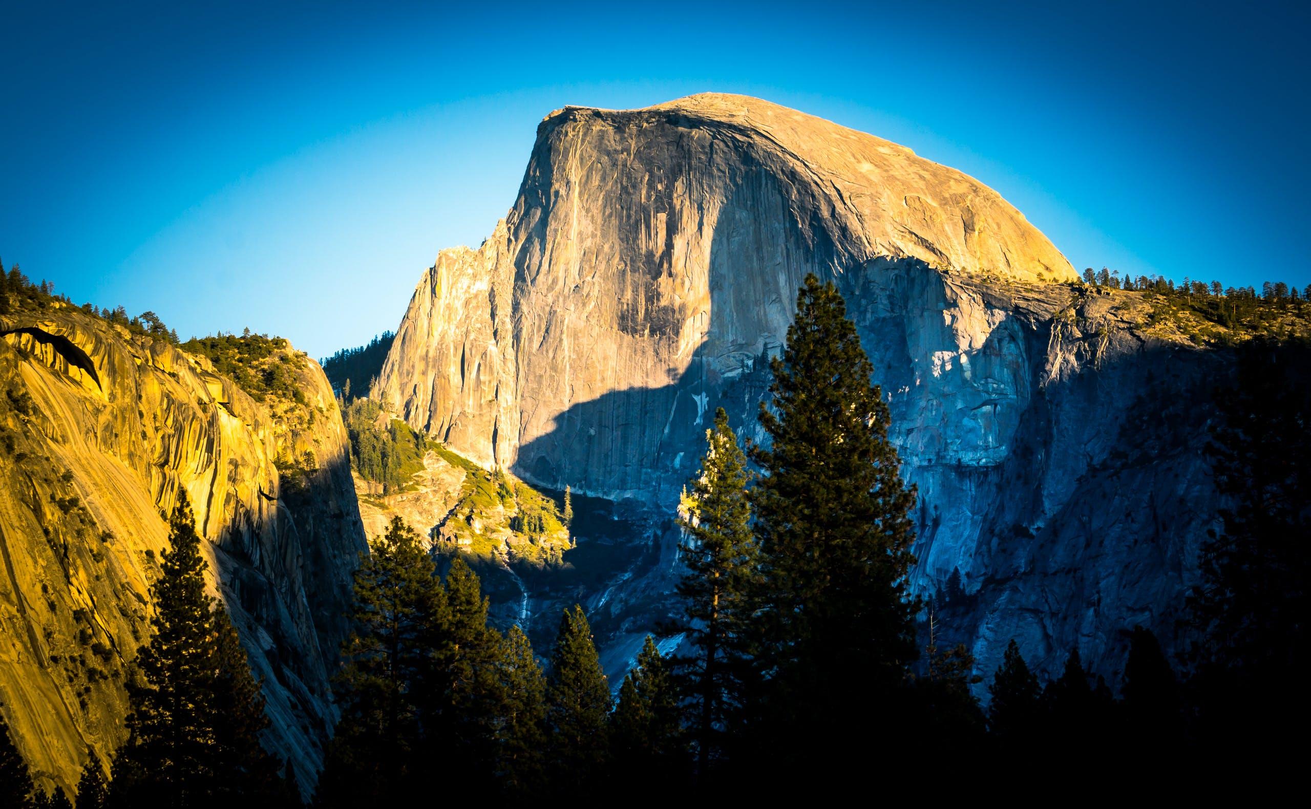 ağaçlar, çam ağaçları, doğa, kayalık içeren Ücretsiz stok fotoğraf
