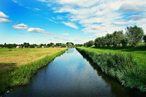 Free stock photo of amstelveen, Dutch landscape, Holland, meadows