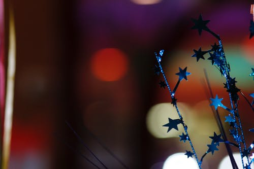 Free stock photo of birthday, celebration, star