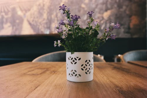 Purple Petaled Flowers on White Jar on Table