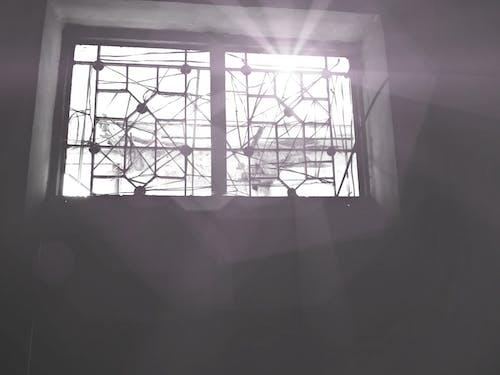Free stock photo of sunlight, window
