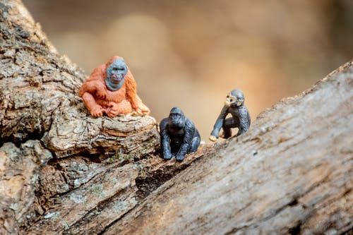Miniature Monkey Toys
