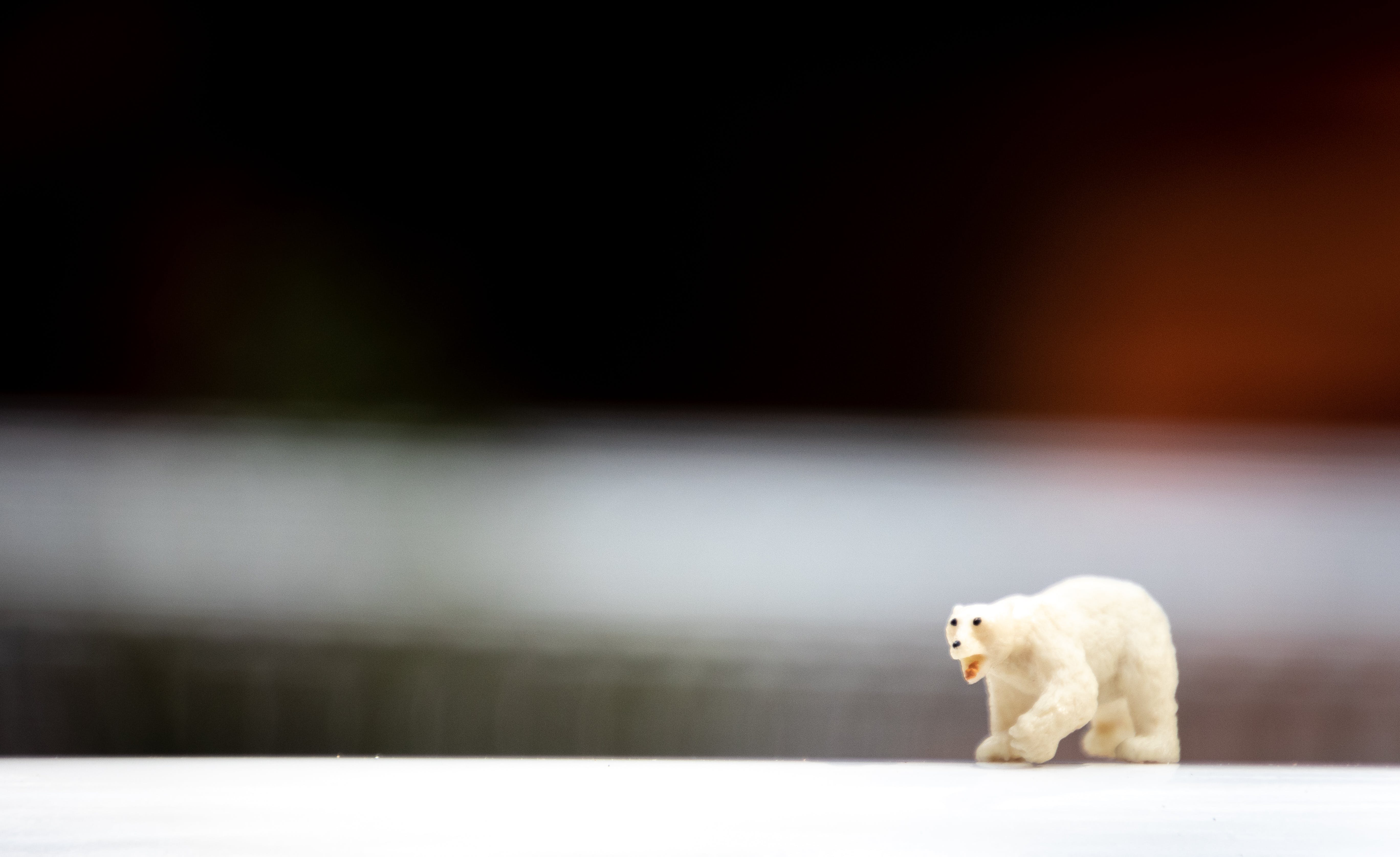 Depth of Field Photo of Polar Bear Figurine