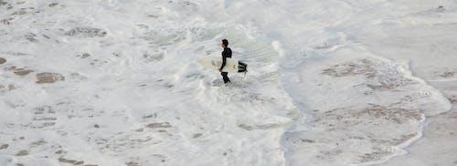 Základová fotografie zdarma na téma moře, písečná pláž, procházení, surfař