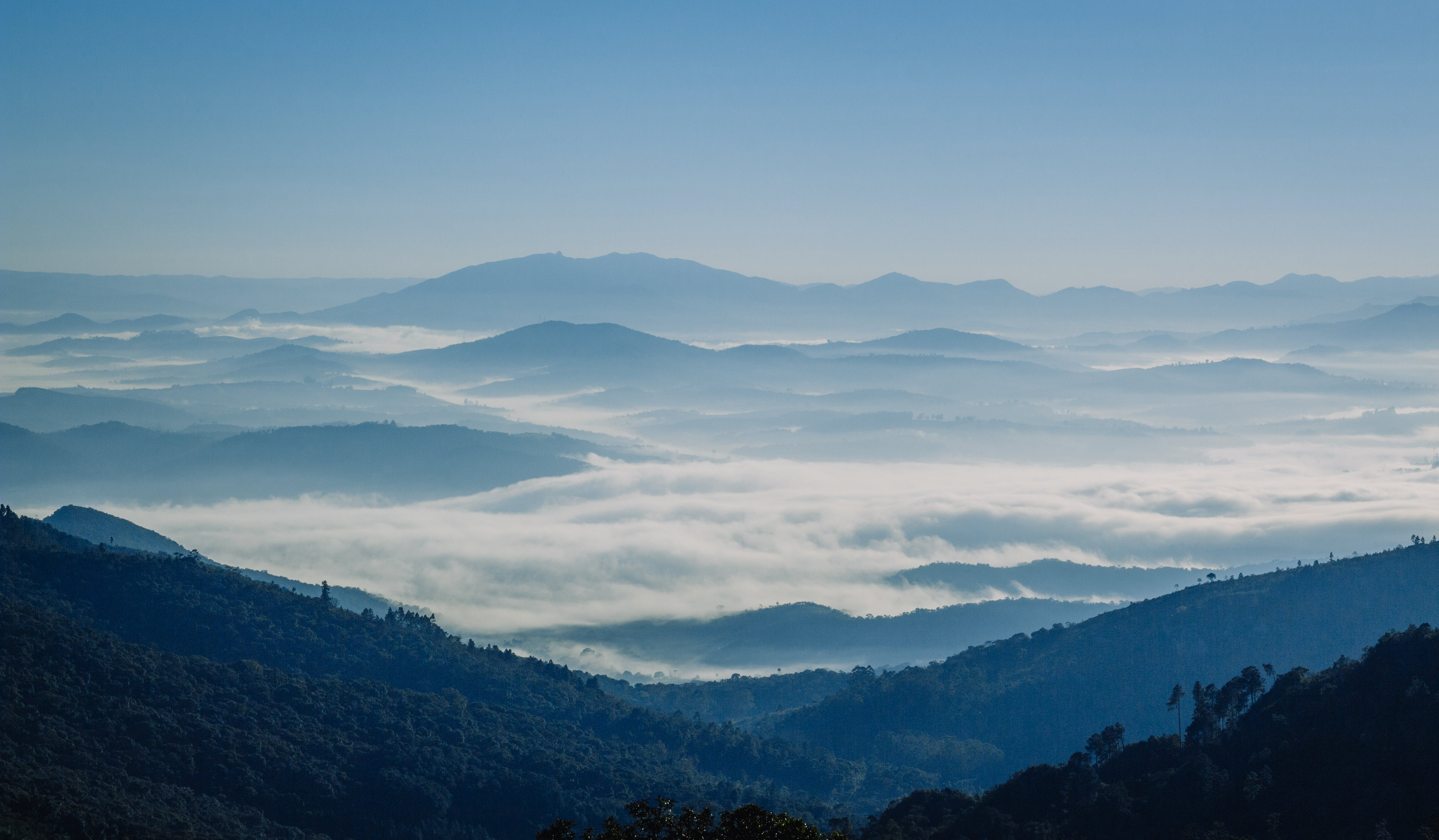 Free stock photo of blue, blue mountains, mist, moutains