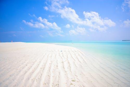 Foto d'estoc gratuïta de aigua, atractiu, calent, cel