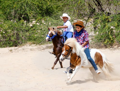 Fotos de stock gratuitas de diversión y actividad para niños.