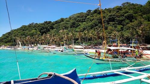 Photos gratuites de arbres, bateau, boracay, points