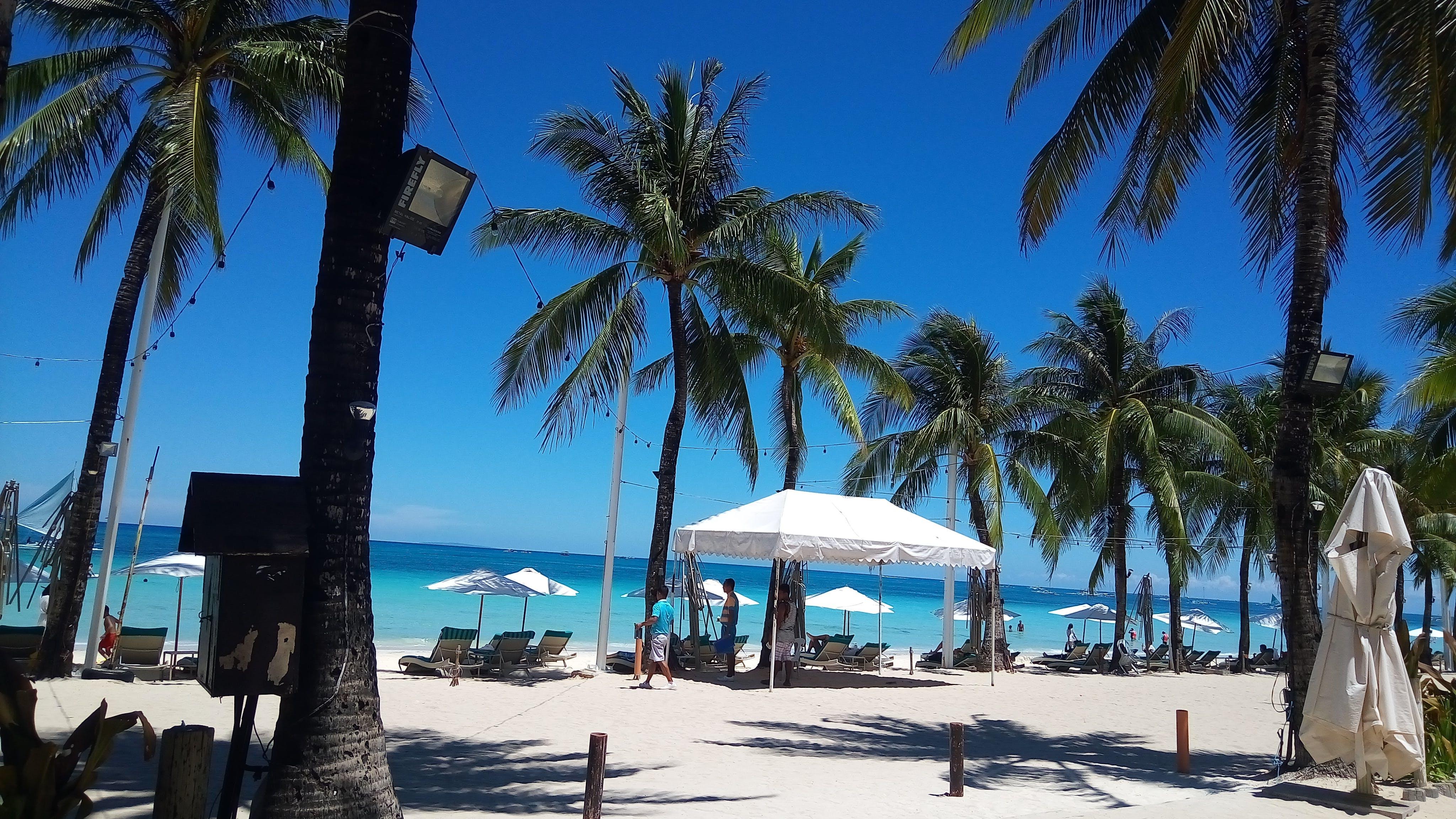 Free stock photo of beach, blue, Boracay, coconut