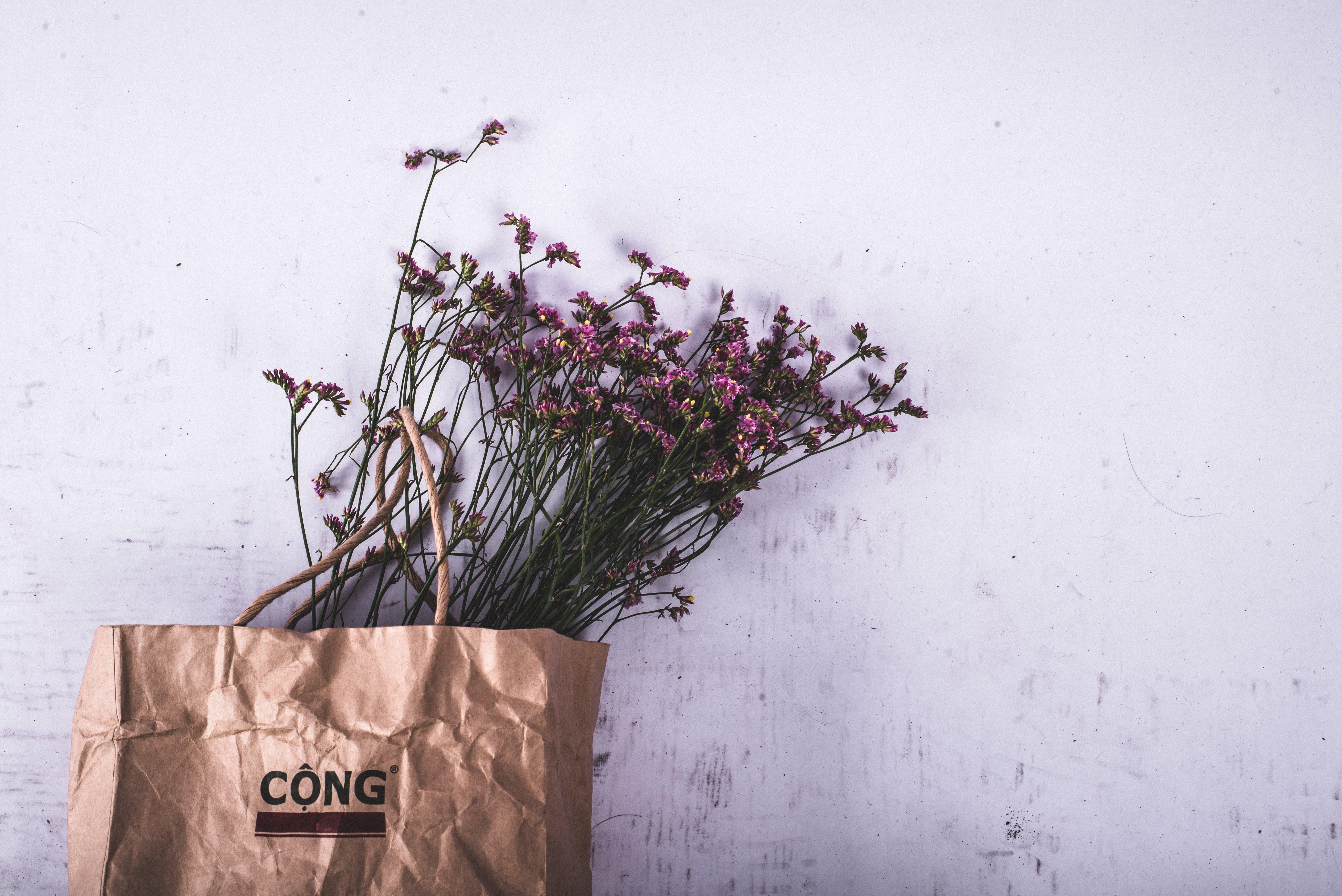 Purple Petaled Flower on Brown Cong Paper Bag
