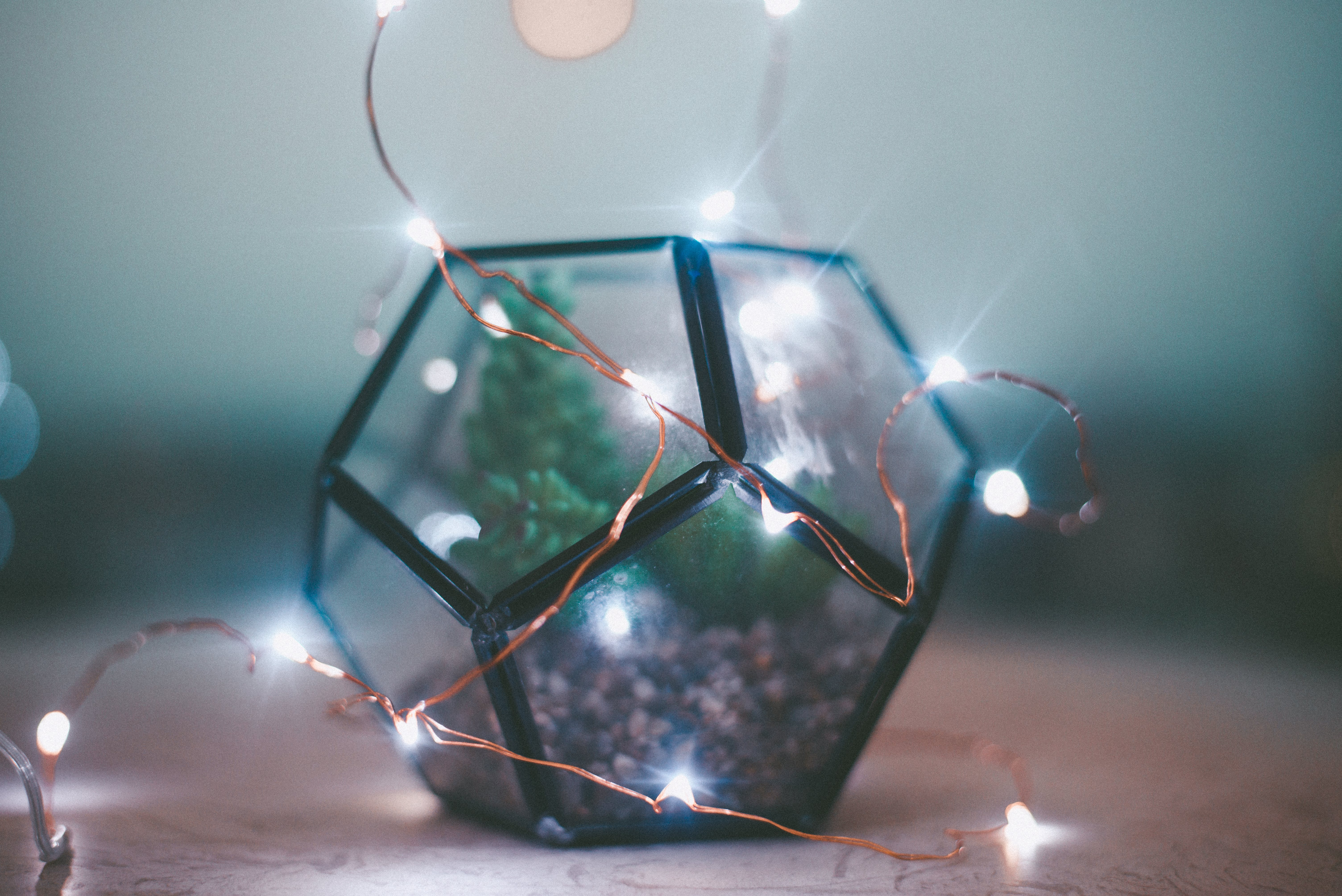 Closeup Photo of Lighted String Light