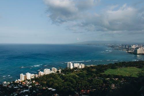 Free stock photo of beach, city, hawaii