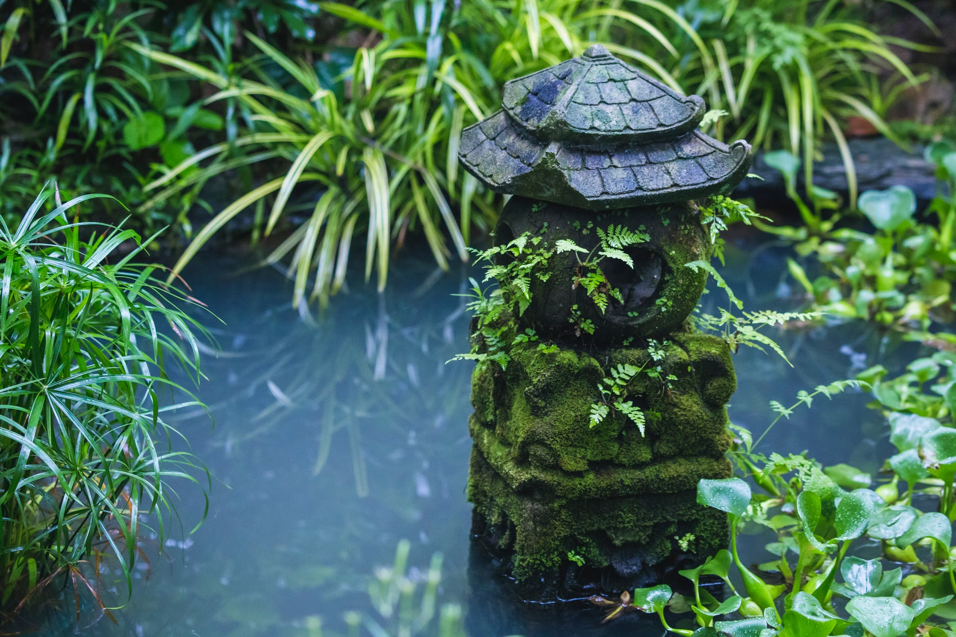 A Natural Garden Pond Building Guide And Practical Ideas