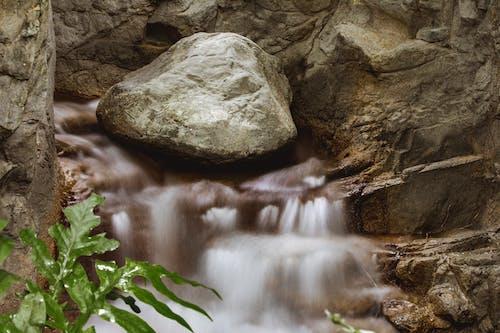 Безкоштовне стокове фото на тему «вода, Геологія, гора, Деревина»