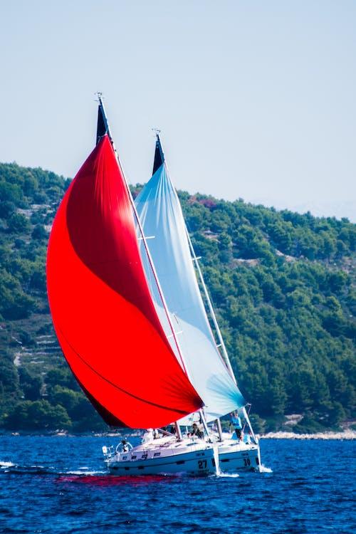Free stock photo of croatia, red, see