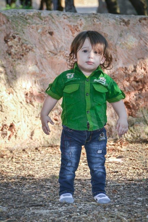 Δωρεάν στοκ φωτογραφιών με moaid mefleh