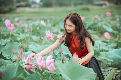 Woman In Red Top Holding Pink Lotus Flower