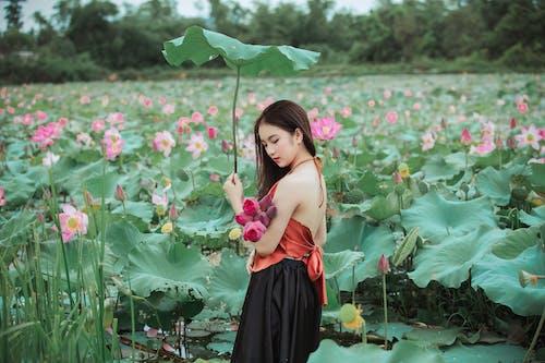 Foto d'estoc gratuïta de asiàtica, bellesa, bonic, dona