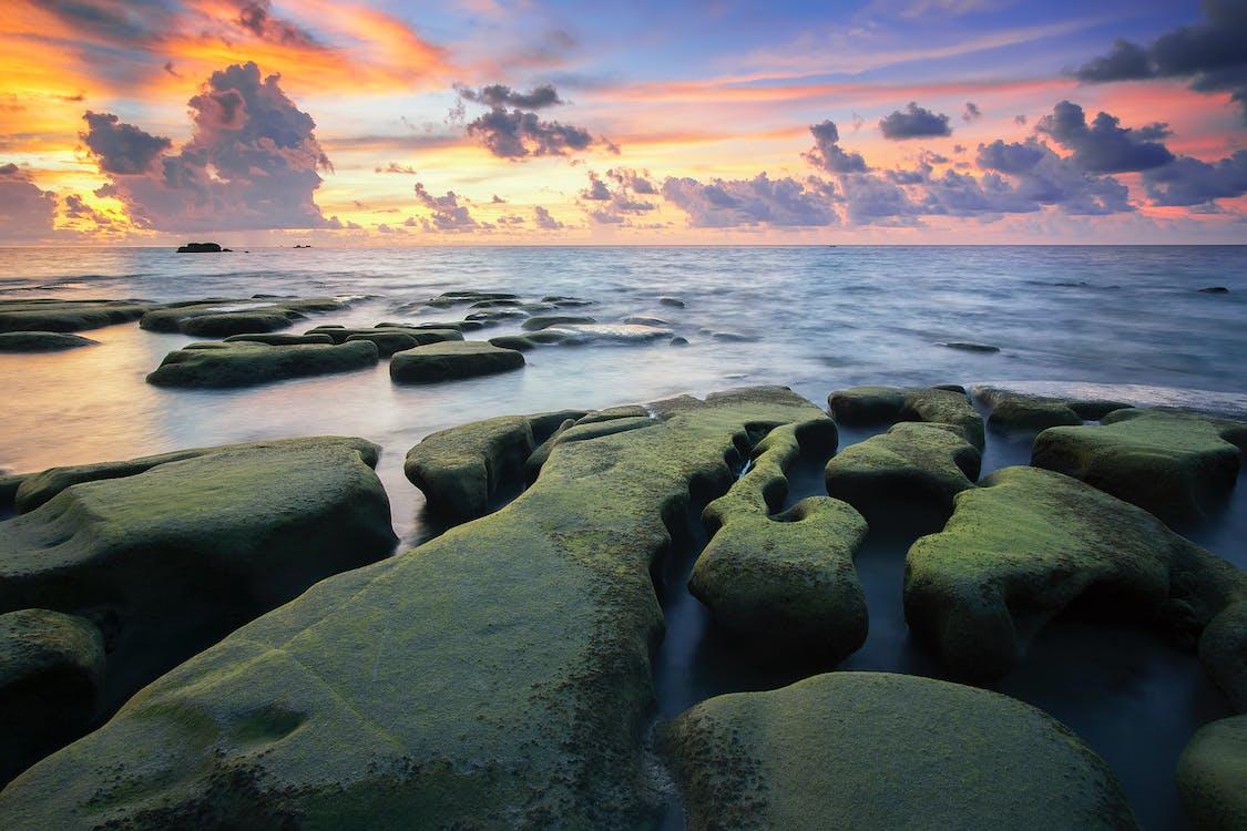 bølger, hav, havudsigt