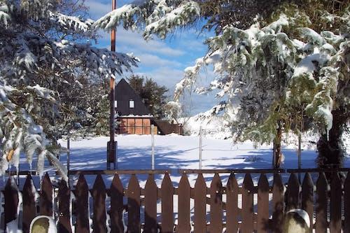 冬, 冬の風景の無料の写真素材