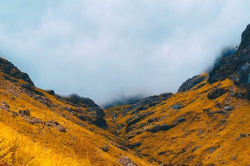 Základová fotografie zdarma na téma barva, chůze, fotografie, hora