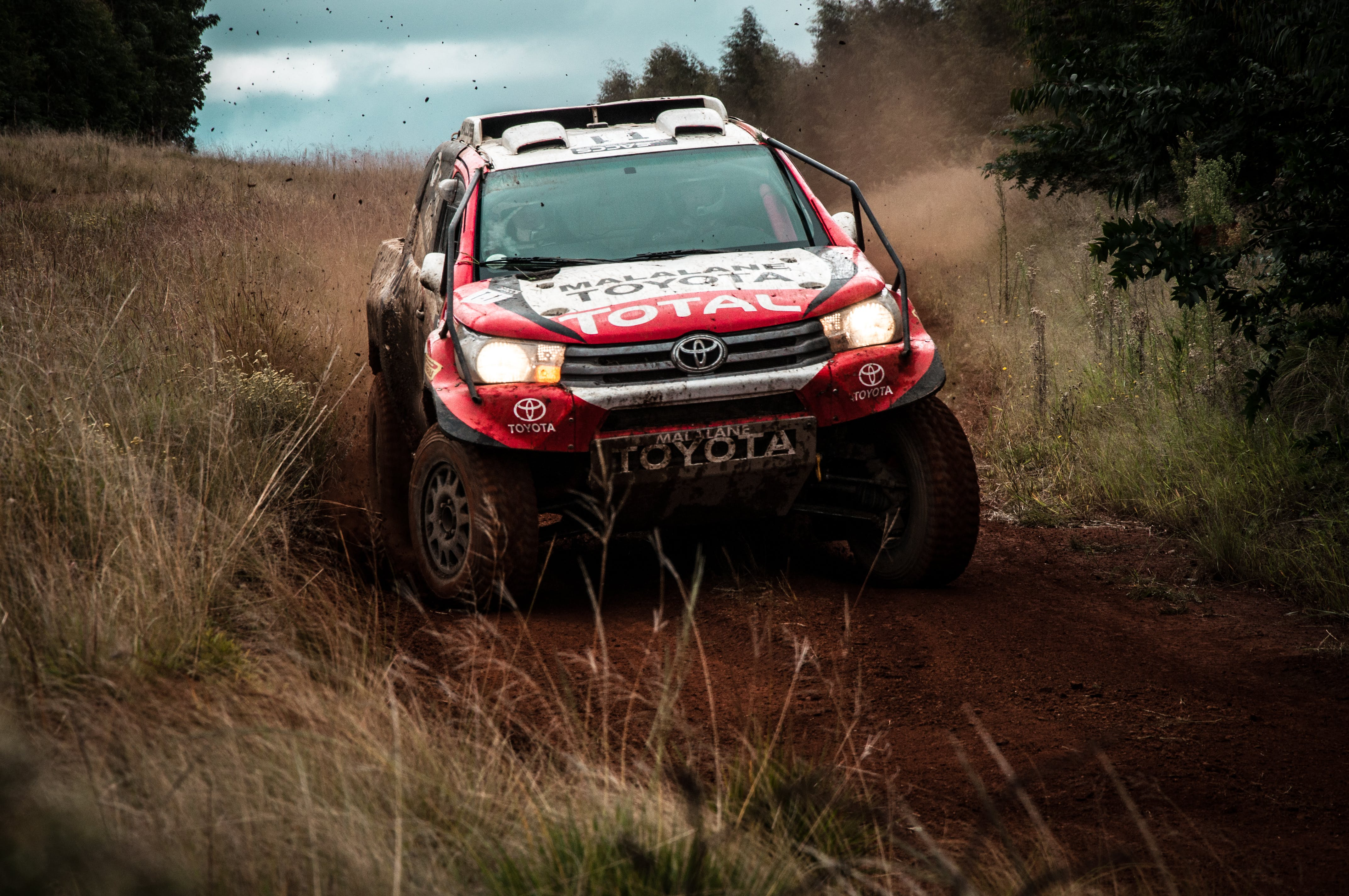 Free stock photo of cars, sports, rally, toyota