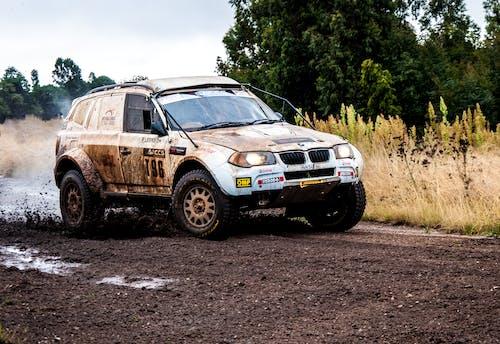 Photos gratuites de automobile, boue, conduire, course