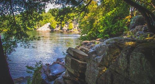Fotobanka sbezplatnými fotkami na tému krása, príroda, skaly, stromy