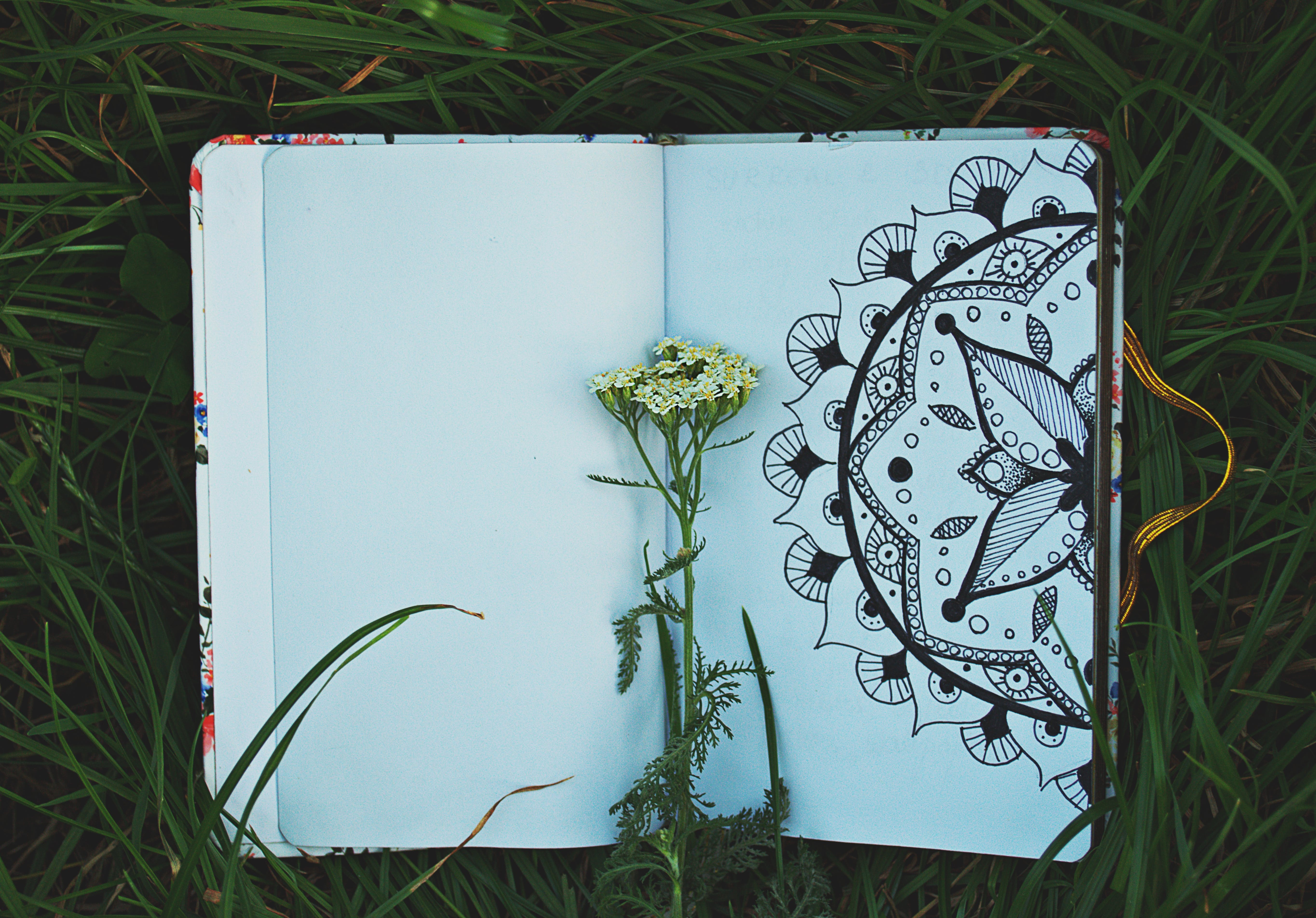 Kostnadsfri bild av anteckningsblock, anteckningsbok, bakgrund, blommor