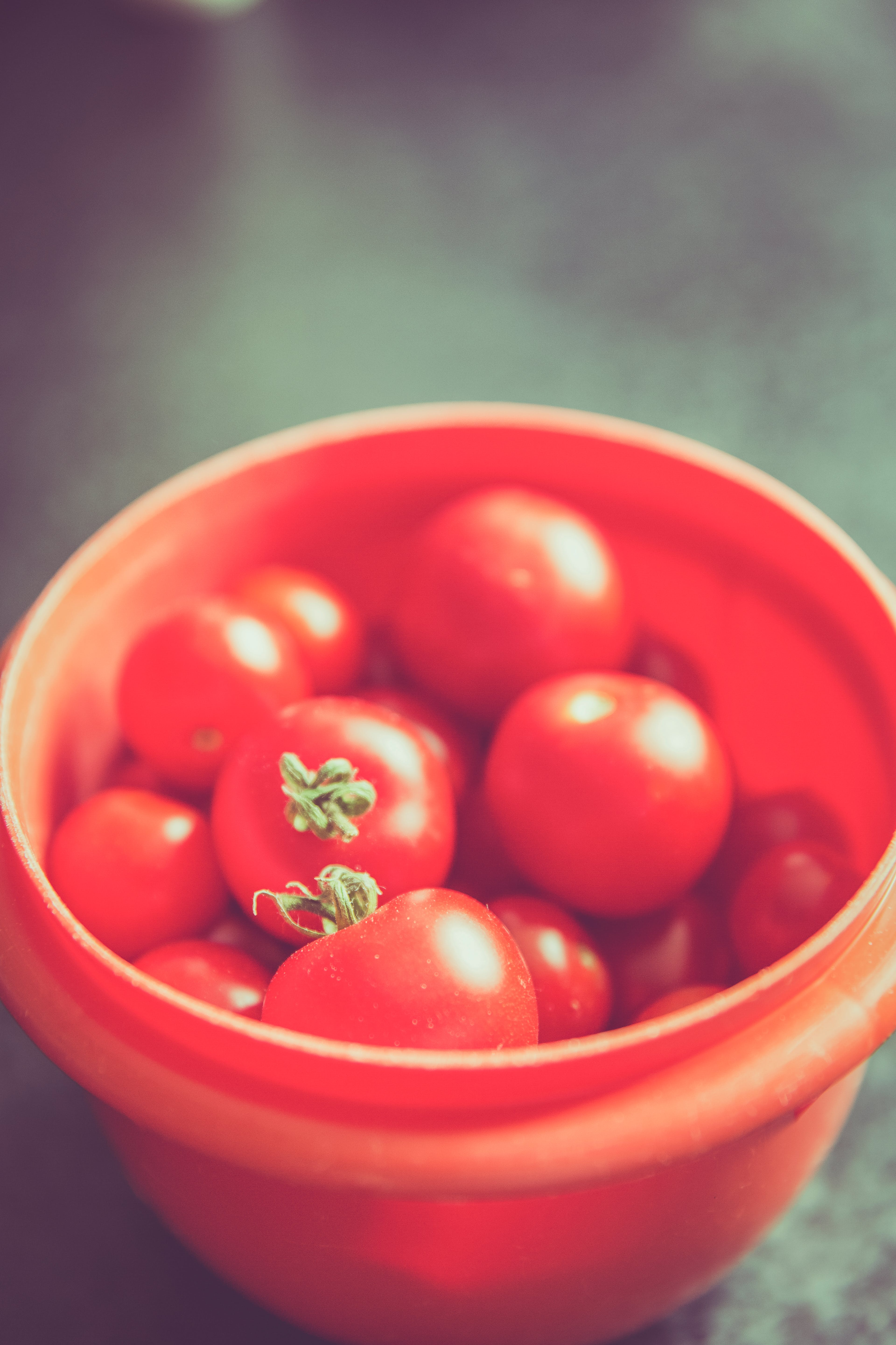 Red Tomato on Orange Round Plastic Container