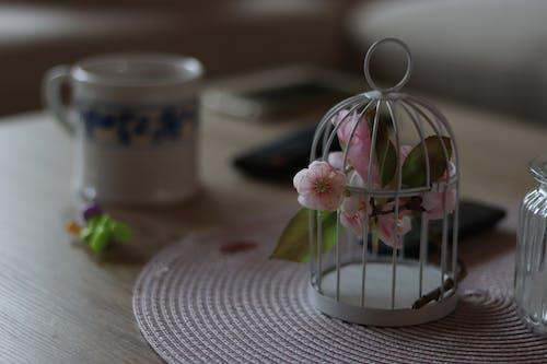 Δωρεάν στοκ φωτογραφιών με λουλούδια, τεχνητός