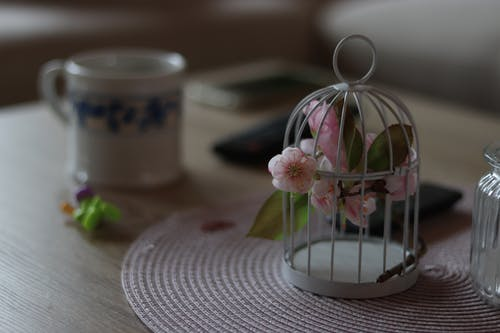 Foto profissional grátis de artificial, flores