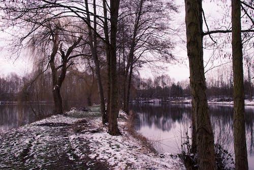 Free stock photo of dark, lakes, lonely