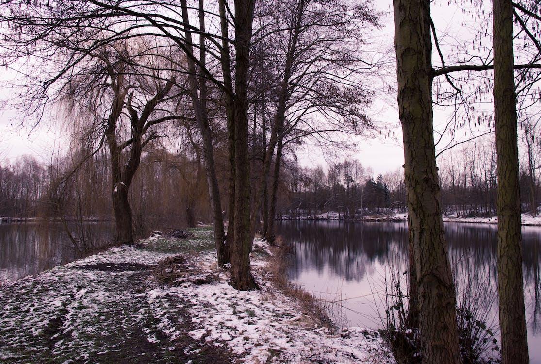 Fotobanka sbezplatnými fotkami na tému chodník, jazerá, osamelý
