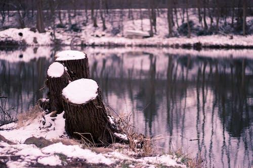 Free stock photo of lonely, mirror, snow