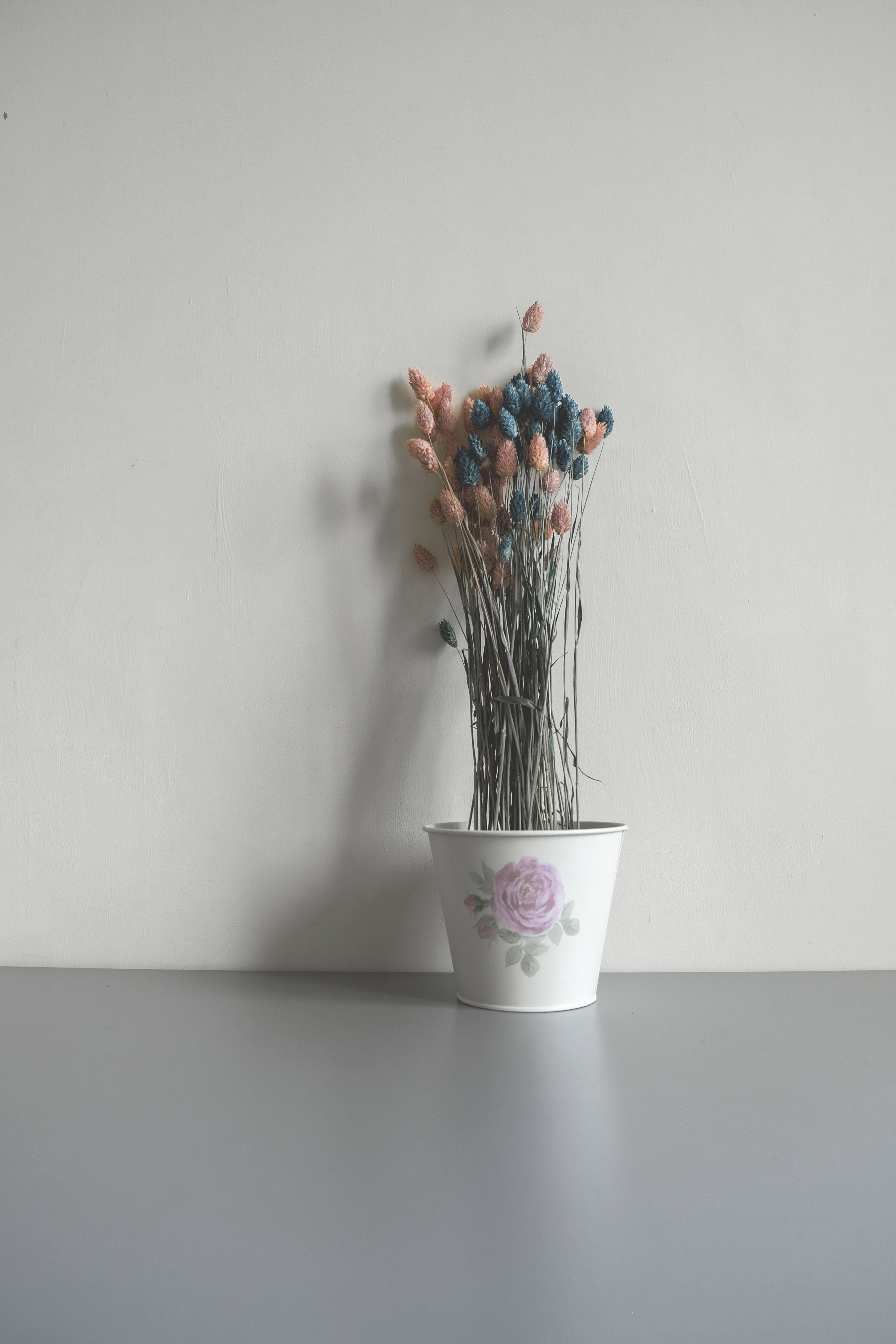 Pink and Blue Flower Buds in Ceramic Pot