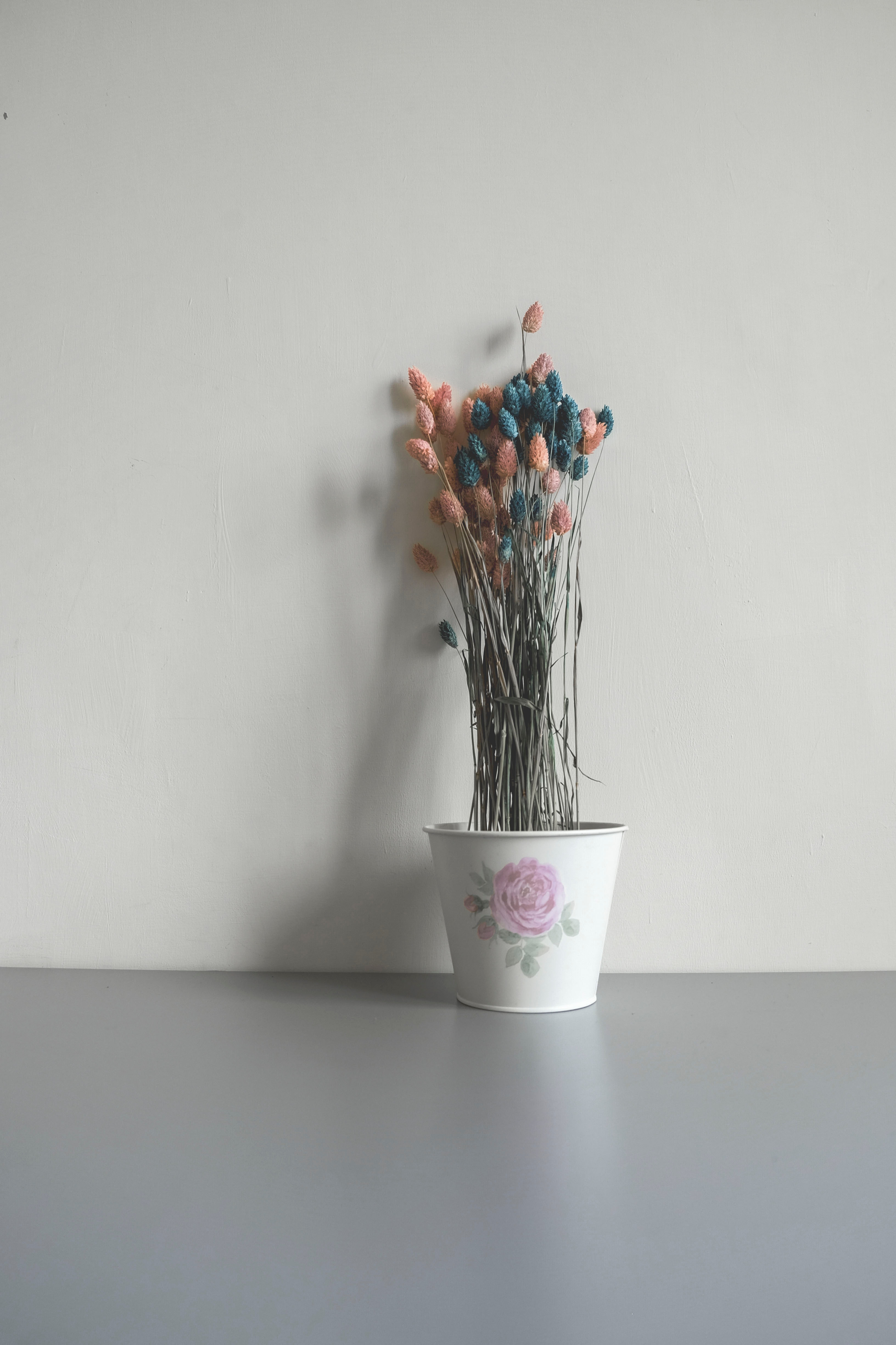 Pink And Blue Flower Buds In Ceramic Pot Free Stock Photo