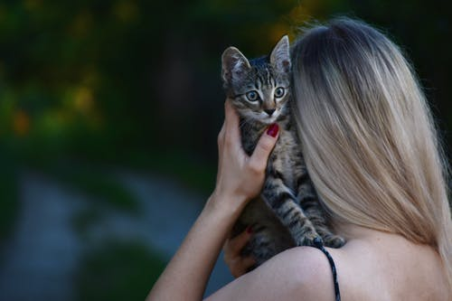 Woman Carrying Tabby Kitten
