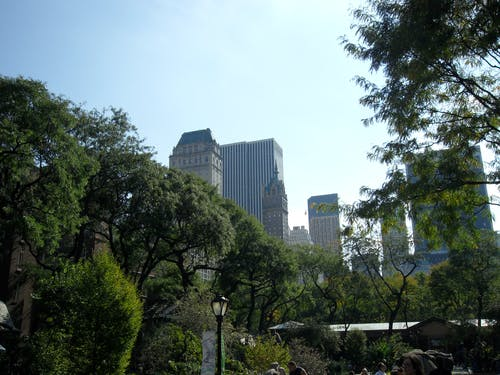 Free stock photo of central park, Central Park Zoo, new york