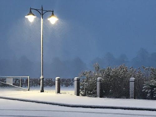 Foto stok gratis hari Natal, kebun, lampu jalan