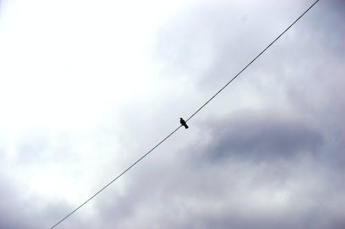 Foto stok gratis #outdoorchallenge, kesendirian, kesepian, langit biru